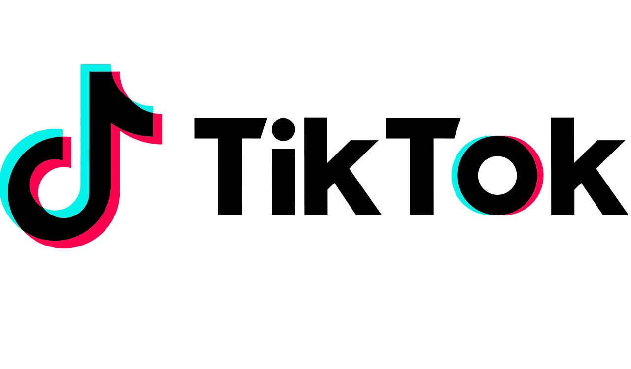 Tik Tok, la aplicación que ha causado furor a nivel mundial