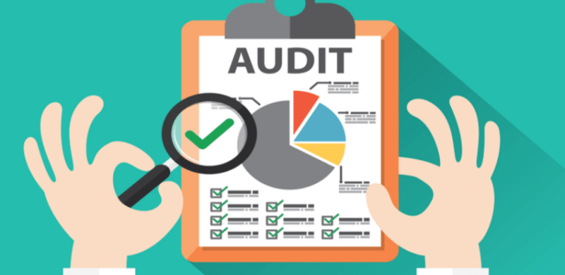 El Consultor de Marketing debe saber realizar auditorías de proyectos